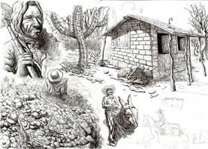 More studies on traditional midia