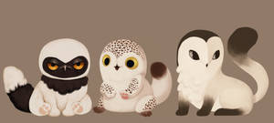 CLOSED / Meowl adopts