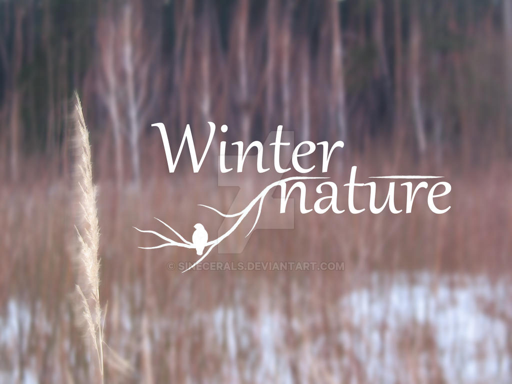 Winter nature  by SineCeraLS