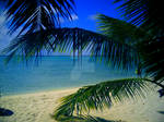 Paradise by k8linswims08