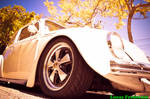 Beetle or Porshe!? by lucasfrederick