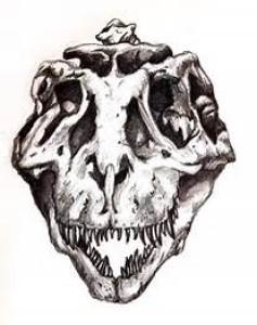 MrDinosaurDNA's Profile Picture
