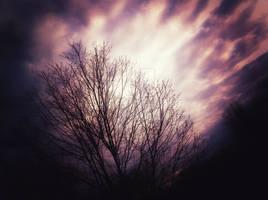 Dreary Skies.