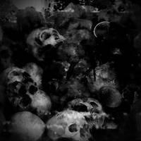 The Killing Fields by nbeasley