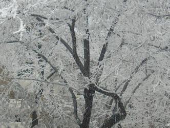 Winter in Bacau by n03ml