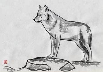 Wolf by glennkenobi