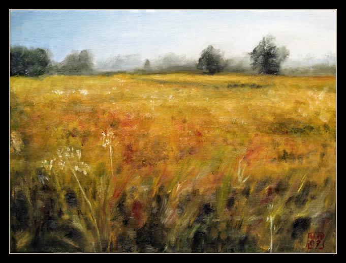 Summer Field by mruqe