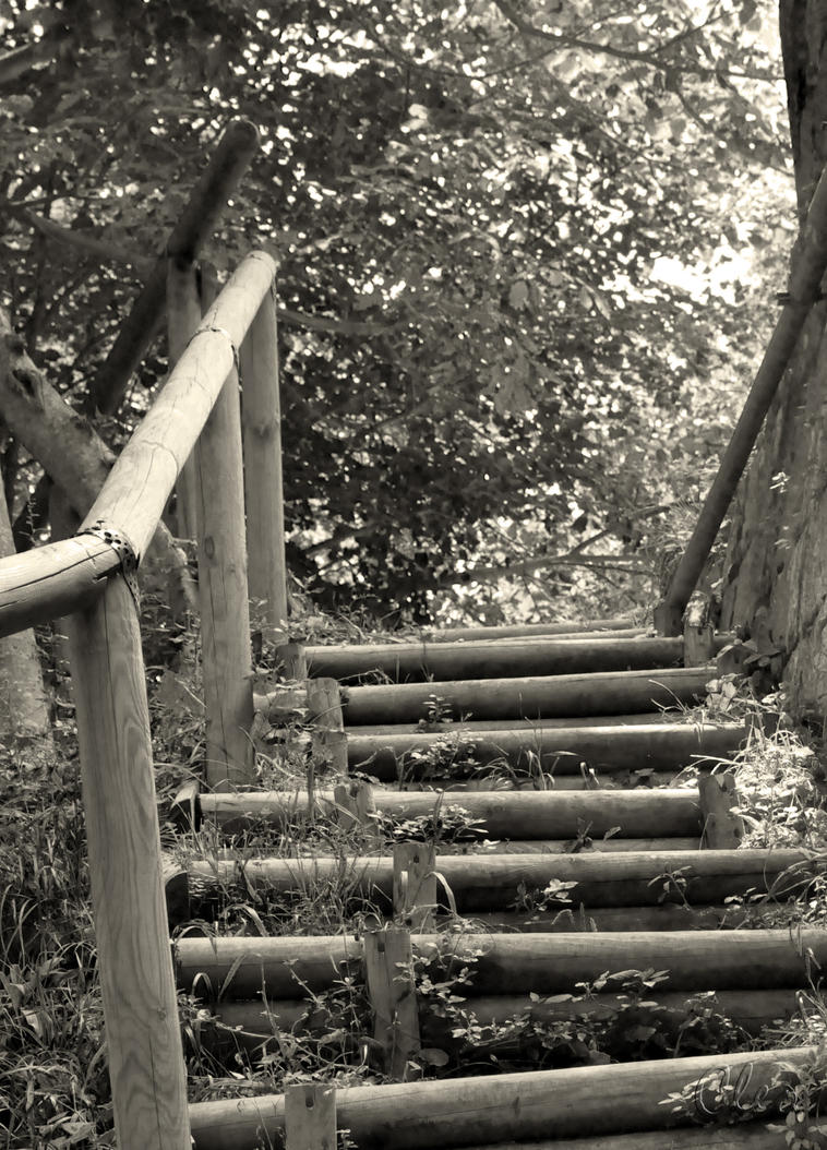 Old Stairs by cleo72