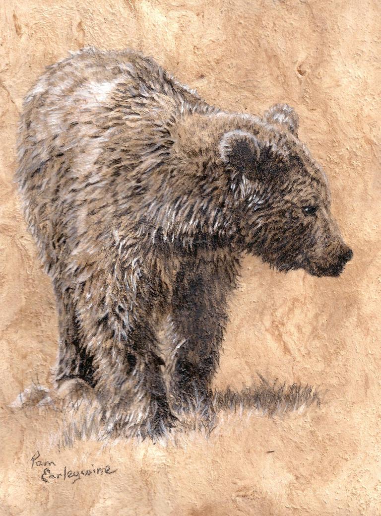 Just a Bear by Earleywine