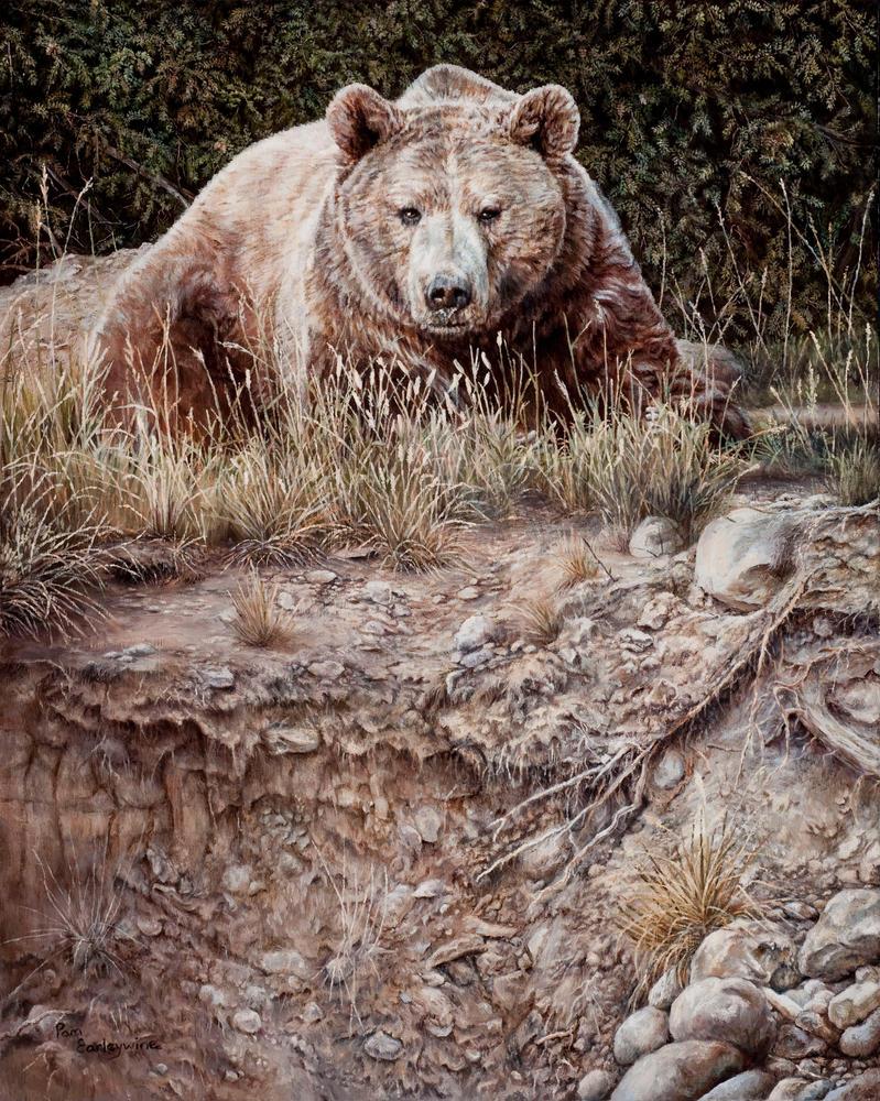 Bear! by Earleywine