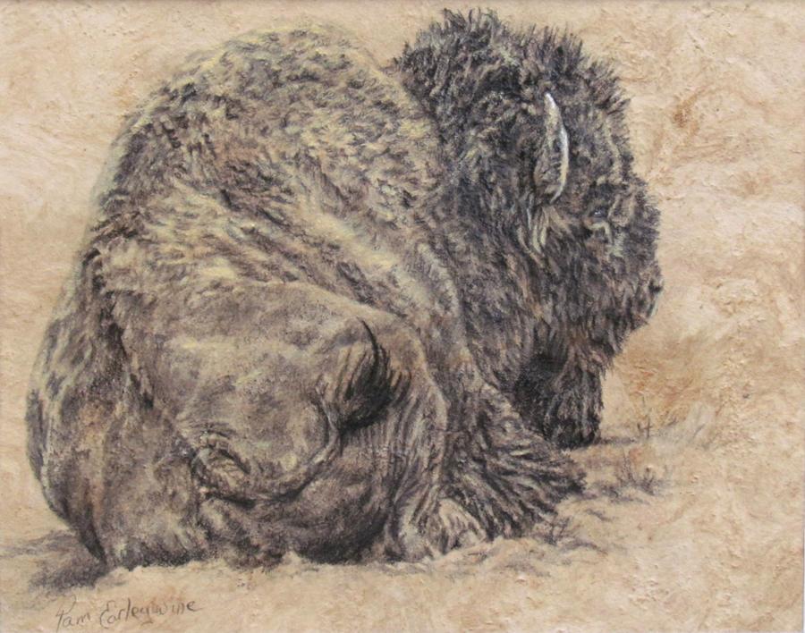 Untitled Buffalo Sketch by Earleywine