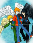 Maximum Ride Boys