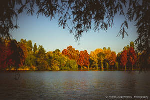 Autumn in My Heart by DrAndrei