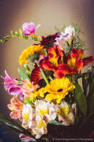 A Bunch of Flowers by DrAndrei