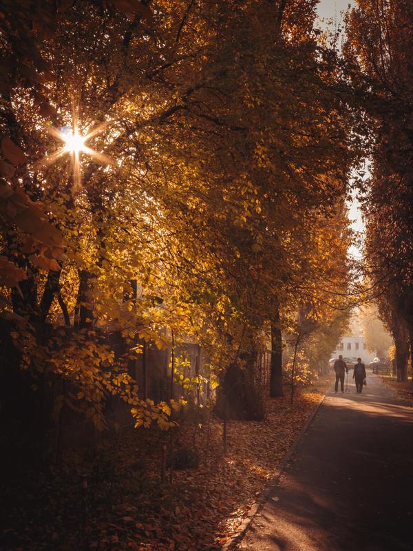 Light of Autumn by DrAndrei