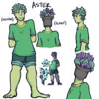 oc ref: aster by perrierra