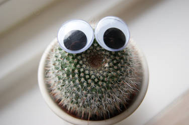 Crying Cactus by HeleneBM
