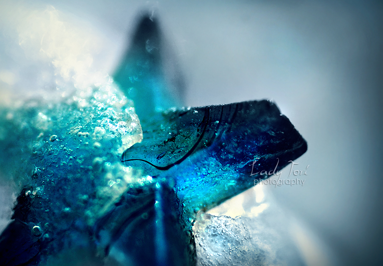 Wordless Wednesday #26 : Frozen Reality