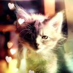 Pure Innocence by Lady-Tori
