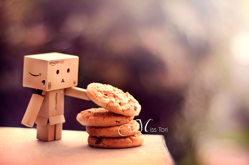Cookie Danbo? by ~Lady-Tori