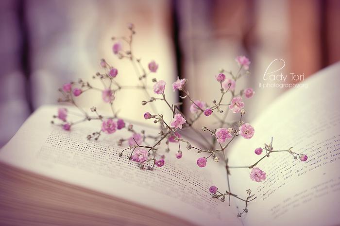 Spring Beauty by Lady-Tori