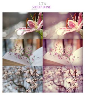 LT's Violet Shine Action