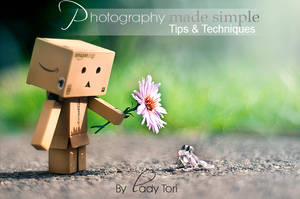 LT's Photography Tips e-Book by Lady-Tori
