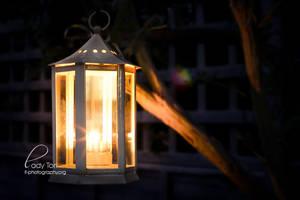 Fairylights by Lady-Tori