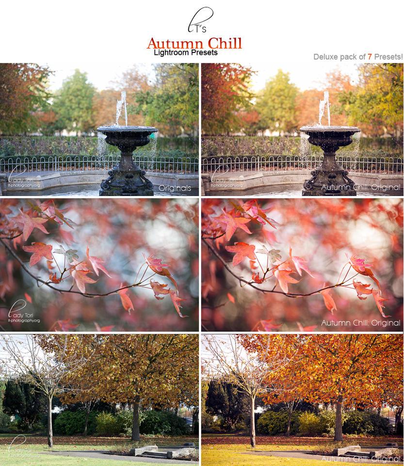 LT's Autumn Chill LR Preset by Lady-Tori