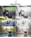 Black and White Lightroom DELUXE Pack