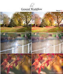 General Workflow Lightroom Preset of 12