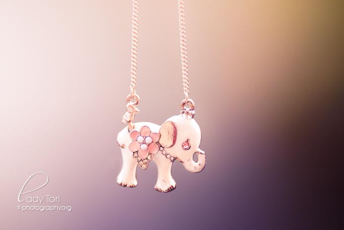 Elephant by Lady-Tori