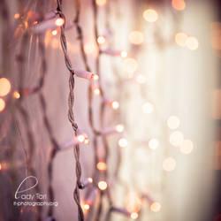 Winter Lights by Lady-Tori