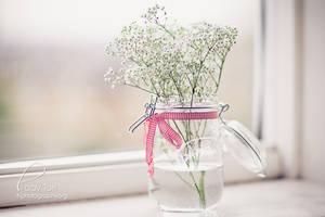 Babysbreath In A Jar by Lady-Tori