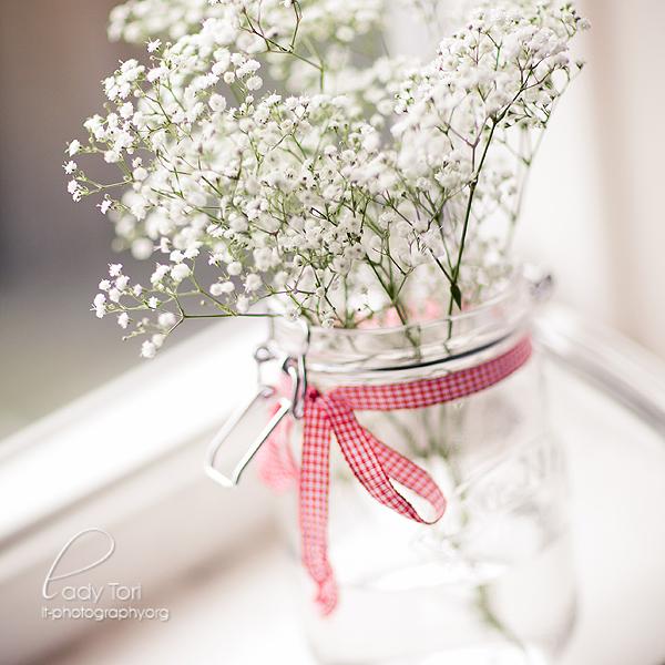 Small Beauty by Lady-Tori
