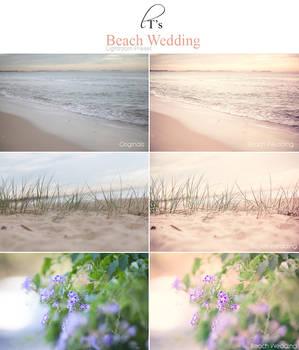 Beach Wedding LR Preset