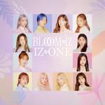 IZ*ONE : BLOOM*IZ Album