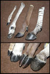 Comparison: Hooves II