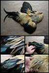 Male Domestic Chicken Skin #1