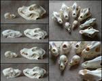 Comparison: Dog Skulls #2