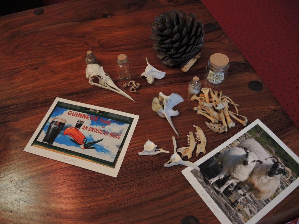 Secret Santa by CabinetCuriosities