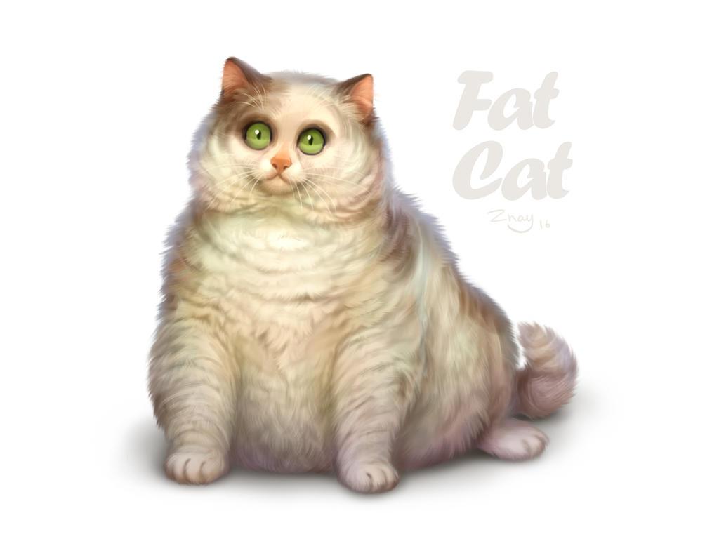 Fat cat by Znayduk