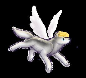 Angel Chrono