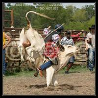 BSLBR 7-13-08 Bull Rider by octagonalstar