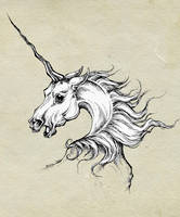 unicorn by Jeanne-Saar