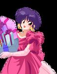 Ranma 1/2 Akane Tendo Christmas Presents