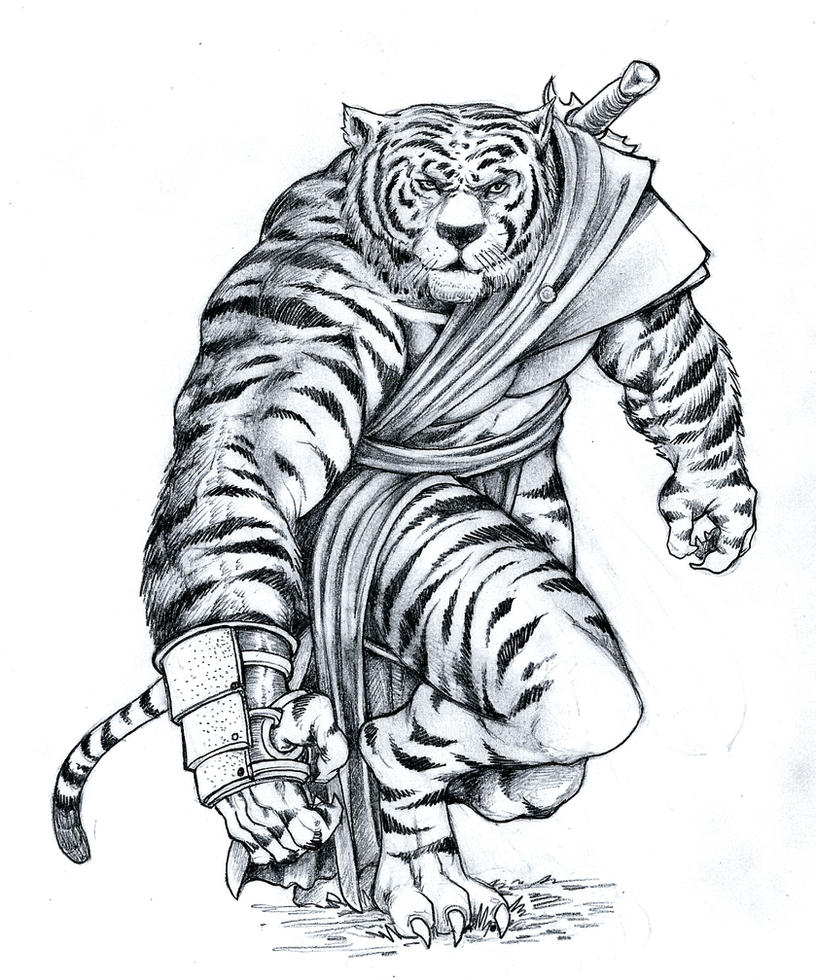 how to draw a tiger whole body