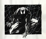 Doodles and Sketches_Spidey