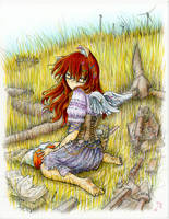 Lost Wings - Yakugashi by fredrin
