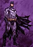 Batman the Gotham knight
